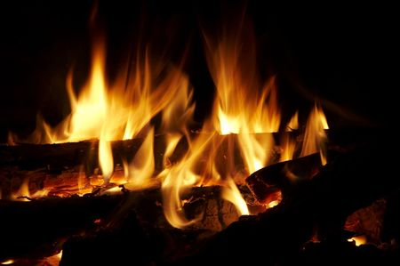 woodscape: Camping fire Stock Photo