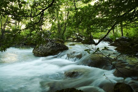 bourn: Beautiful creek in the Crimea forest Stock Photo