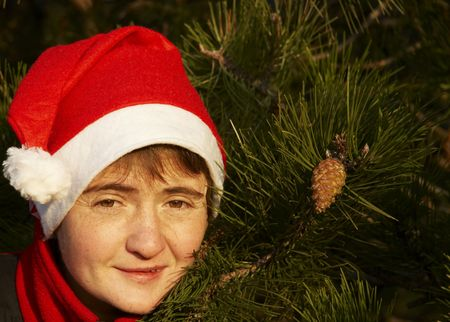 Portrait of young woman wearing santa claus hat on pine branch Stock Photo - 626659