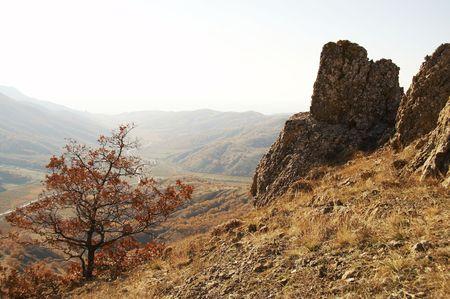 Autumn forest in the Crimea mountain Stock Photo - 639686