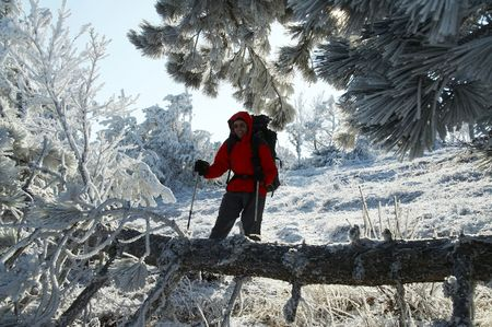 Men in the beautiful winter forest Stock Photo - 688960