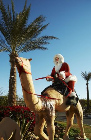father frost: Father Frost is going to east on the camel
