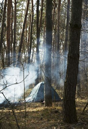 Tent and campfire in forest photo