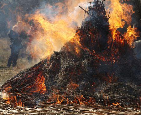 fireplace bellows: Carnival fire