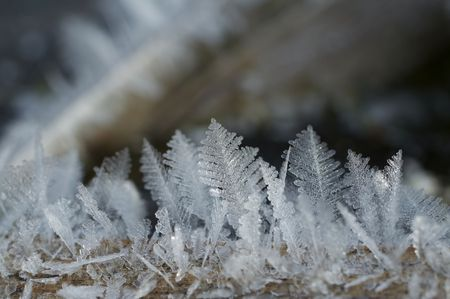 close-up of ice photo