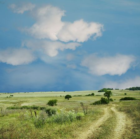Colorful fields - Landscape  grass, blue sky and white clouds photo