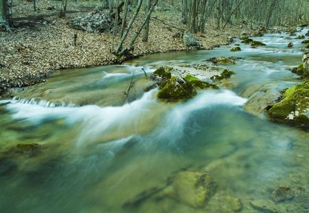 Beautiful small river in forest Stock Photo - 867987
