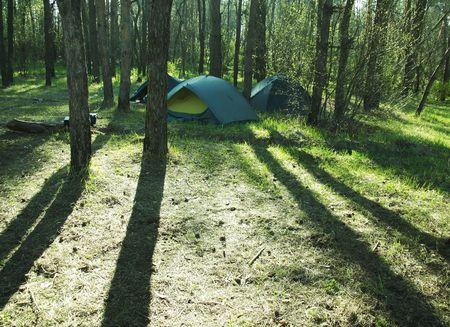 Tents in the forest Stock Photo - 889444