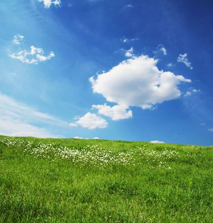 Green grassland and sky for background Stock Photo - 1010764
