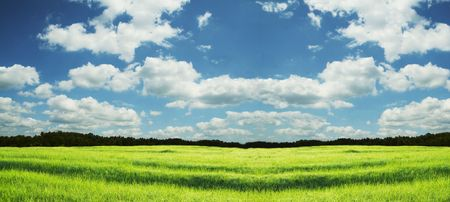 Green grassland and sky for background Stock Photo - 1063954