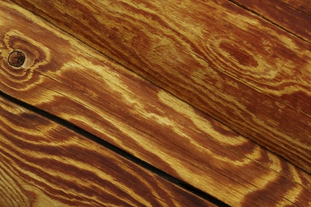 woodscape: wood texture