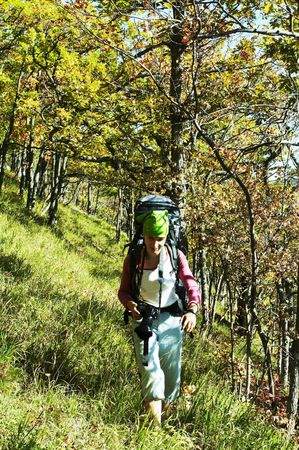 woodscape: Backpacker going in autumn forest