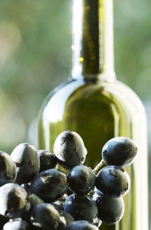 Wine and grape Stock Photo - 1962650
