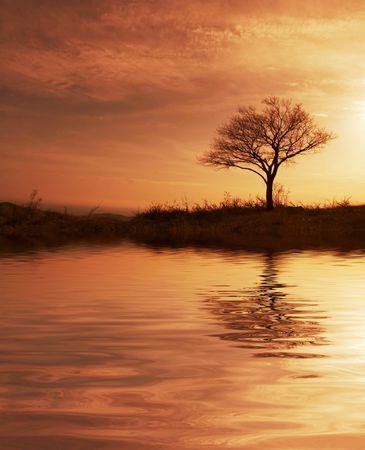 Sunset scene Stock Photo - 2181177