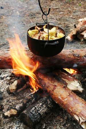 broil: campfire in forest Stock Photo