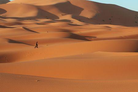 Sahara desert photo