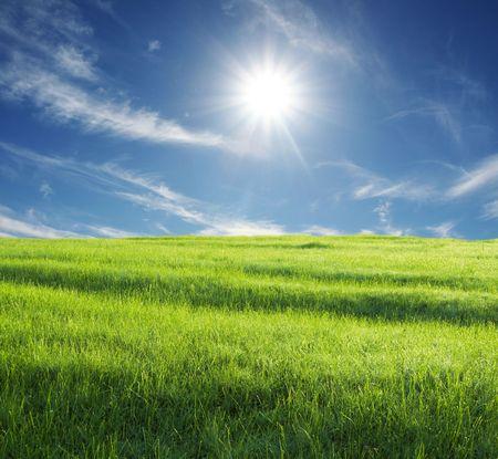 green grassland and sunny sky Stock Photo - 2392951