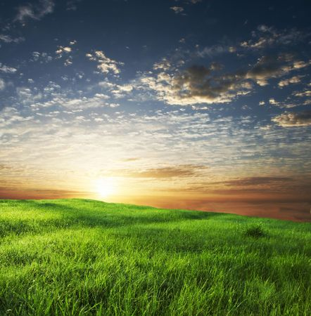 green grassland on sunset Stock Photo - 2410016