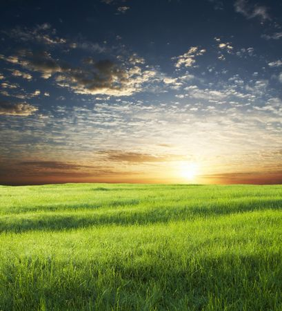 green grassland on sunset Stock Photo - 2438254