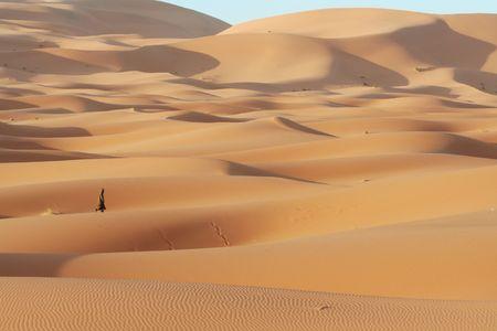 berber: Alone berber in Sand desert Stock Photo