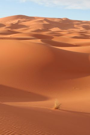 Desert Stock Photo - 2449275