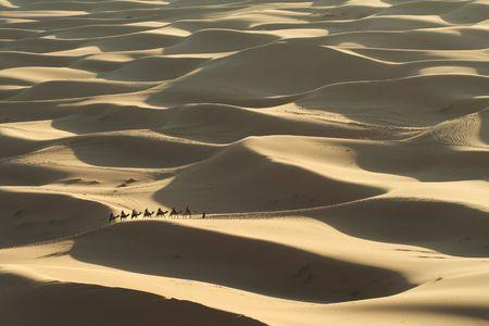 Desert Stock Photo - 2449324