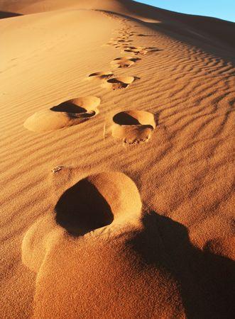 desert footprint: Footprints on the sand Stock Photo