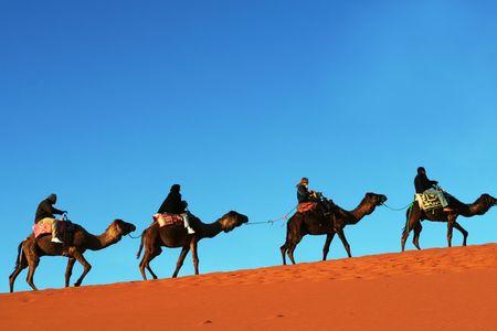 desierto del sahara: Caravana en el desierto del S�hara