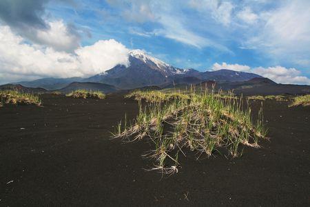 tremor: Volcano Tolbachik on Kamchatka