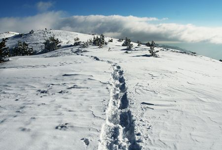 Snow in the mountain photo