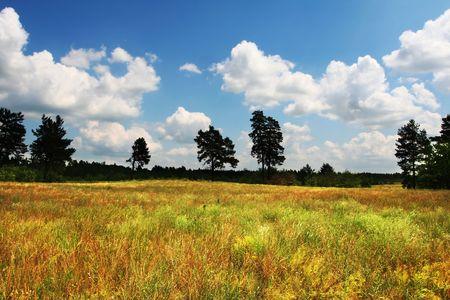 Rural landscapes photo