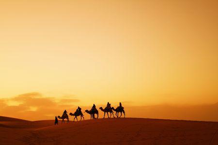desierto del sahara: Caravana en el desierto de Sahara