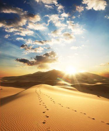 huellas de pies: Desierto