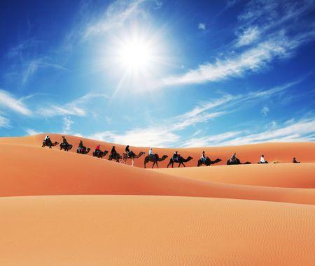 expeditions: Caravan in Sahara desert
