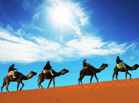 Caravan in Sahara desert photo