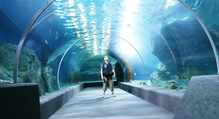 Tourist in big aquarium photo