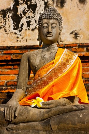 Buddha Stock Photo - 4562513