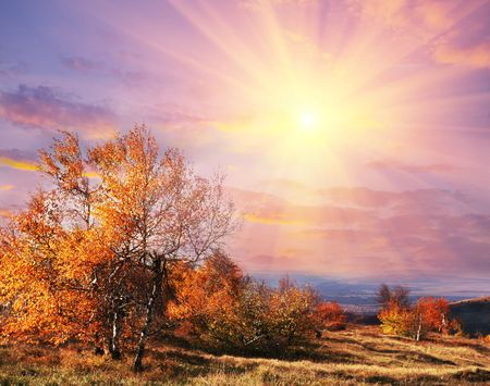 Autumn scene Stock Photo - 5062362