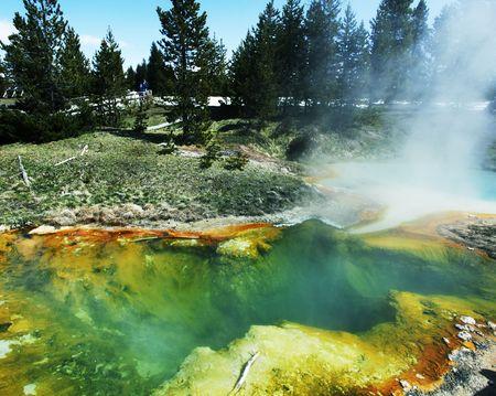 Mammoth Hot spring photo