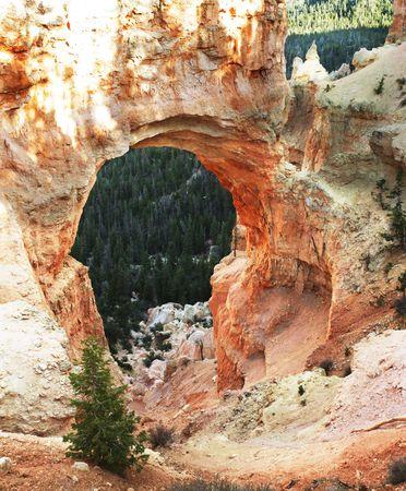 majesty: Bryce Canyon Stock Photo