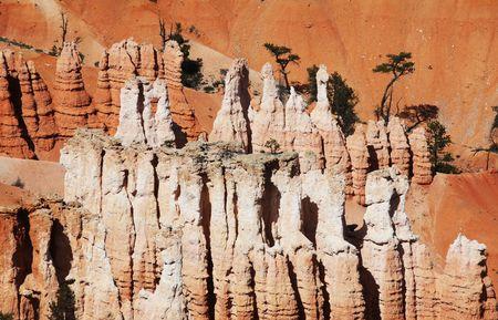 bryce: Bryce canyon