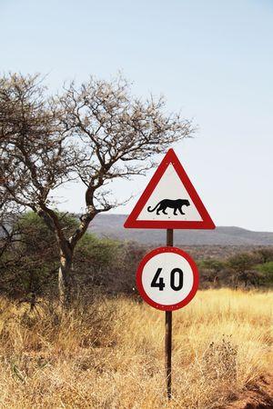 okonjima: African sign