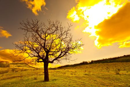 paisajes: Escena de oto�o