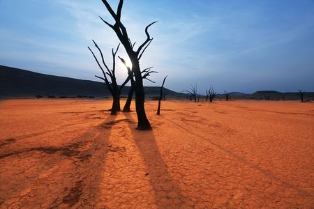 Dead valley in Namibia Stock Photo - 5722587