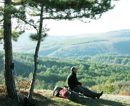 halt: halt in hike