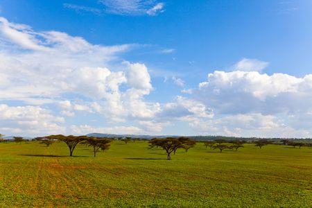 Ethiopia photo