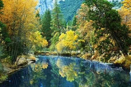 beautiful woodland: autumn