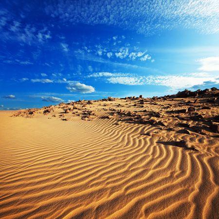 desierto: Desierto de arena Foto de archivo