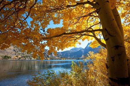 Autumn scene Stock Photo - 6982256