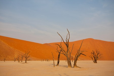 waterless: Dead valley in Namibia